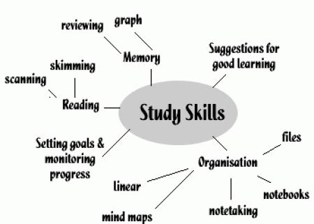 Essay about study habits